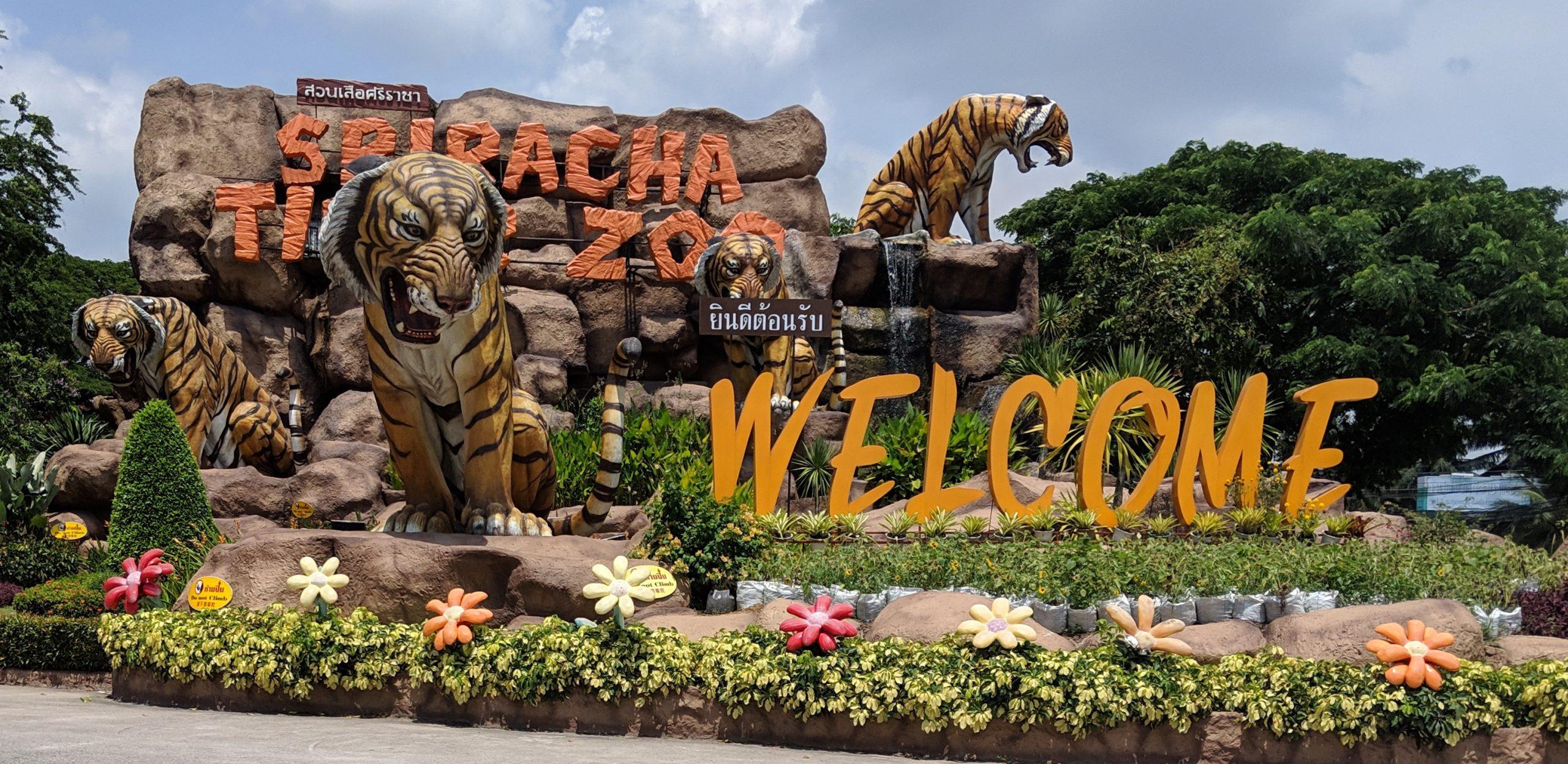 【バンコク・パタヤ】虎と触れ合える楽園!シーラチャータイガーズーの予算と行き方を画像で紹介